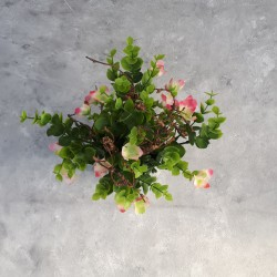 """Цветы в горшке """"Франкения"""" 30см, арт. 4976"""