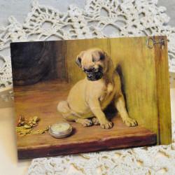 "Ретро открытка ""Мопс"", арт. 3137/4648"